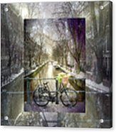 Waiting In The Snow Acrylic Print