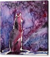 Waiting Acrylic Print by Zaira Dzhaubaeva