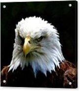 Wake Up America Acrylic Print