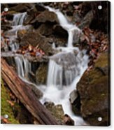 Walden Creek Cascade Acrylic Print