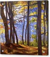 Walden Pond IIi Acrylic Print