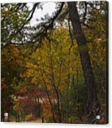 Walden Pond Path Into The Forest 2 Acrylic Print