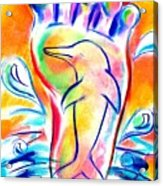 Walk Free As A Dolphin Acrylic Print