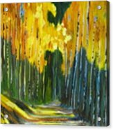 Walk In The Forest Acrylic Print