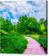 Walk Into Beauty Shaw's Nature Reserve Wet Lands Acrylic Print