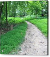 Walk The Path Acrylic Print
