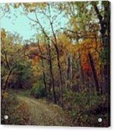 Walk Through Lowell Park Acrylic Print