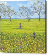 Walking In The Mustard Field Acrylic Print