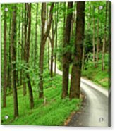 Walking On A Country Road - Appalachian Mountain Backroad Acrylic Print