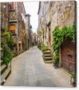 Walking Through Old Europe Acrylic Print