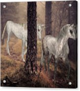 Walking Unicorns Acrylic Print