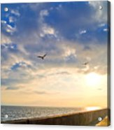 Walkway Along Oceanfront Acrylic Print by David Buffington
