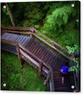Walkway Tahquamenon Lower Falls Upper Peninsula Michigan Acrylic Print