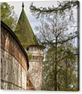 Wall And Tower Acrylic Print