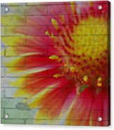 Wall Flower Acrylic Print
