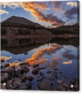 Wall Reflection Acrylic Print