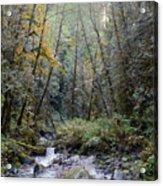 Wallace River Acrylic Print