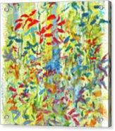 Wallflowers Acrylic Print