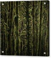 Wallpaper Trees Acrylic Print