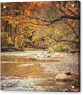 Walnut Creek In Autumn Acrylic Print