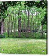 Walnut Grove Acrylic Print