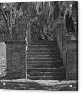 Wandering Steps Acrylic Print