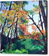 Wandering Through The Woods Acrylic Print