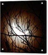 Waning Crescent Moon 2 Acrylic Print