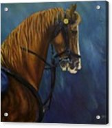 Warhorse-us Cavalry Acrylic Print