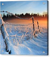 Warm Cold Winter Sunset Acrylic Print