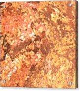 Warm Colors Natural Canvas 2 Acrylic Print
