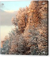 Warm Light Snow Acrylic Print