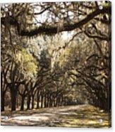 Warm Southern Hospitality Acrylic Print
