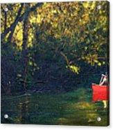 Warm Summer Shade Acrylic Print