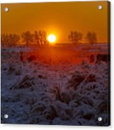 Warm Sunrise In Winter Acrylic Print