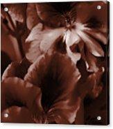 Warm Tone Monochrome Floral Art Acrylic Print