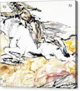 Warrior On White Horse Acrylic Print