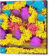 Was Multicolor Rain Acrylic Print