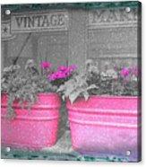 Wash Tub Planters Acrylic Print