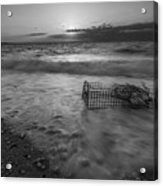 Washed Up Crab Cage 16x9 Bw Acrylic Print