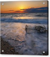 Washed Up Crab Cage 16x9 Acrylic Print
