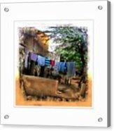 Washing Line And Cows Indian Village Rajasthani 1b Acrylic Print