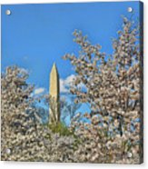Washington Monument # 11 Acrylic Print