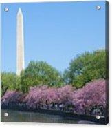 Washington Monument 2 Acrylic Print