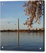 Washington Monument Acrylic Print by Megan Cohen