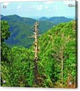 Washington National Forest,wv Acrylic Print