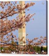 Washinton Monument In Spring Acrylic Print