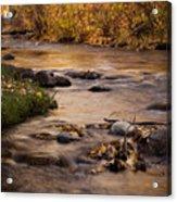 Washoe Park In Autumn Acrylic Print