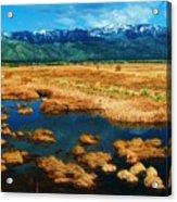 Washoe Valley Acrylic Print