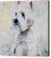 Watch Dog Acrylic Print